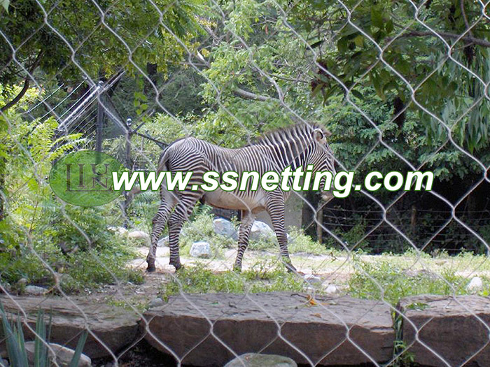 zoo zebra fence netting