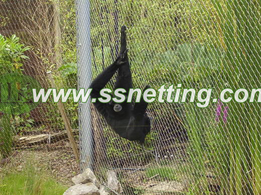 Gorilla cage fence designing and selection
