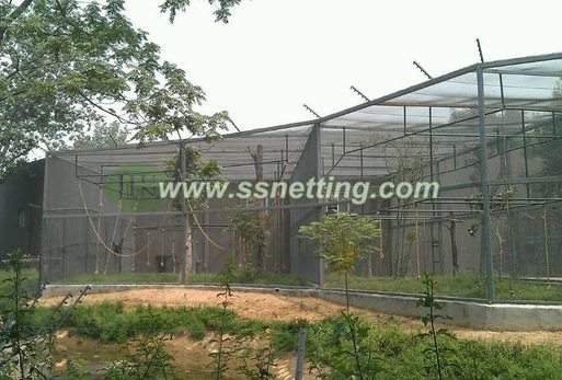 Now is a project case about Gorilla barrier Cage fencing in Beijing zoo, China