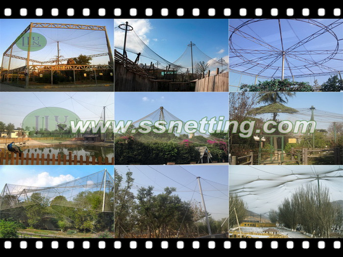 Flexible netting aviary for birds, bird aviary netting project cases