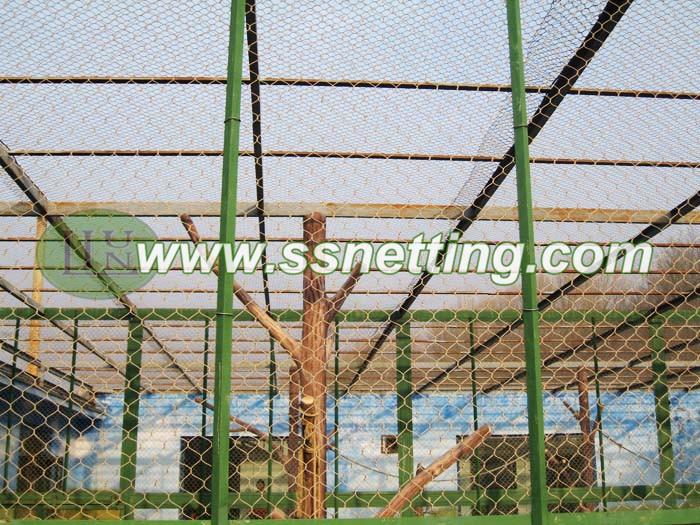 bird cages mesh (19)