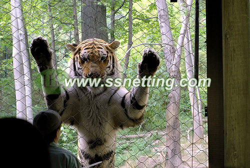 zoo ss tiger fence, safari metal tiger enclosure, wild animal park's fexible tiger zoo fence