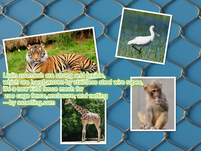 Stainless steel Zoo mesh include kinds of animal fence, animal enclosure, bird netting