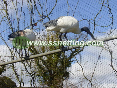 Stainless steel wire rope mesh used for Red Crowned Crane cages fence