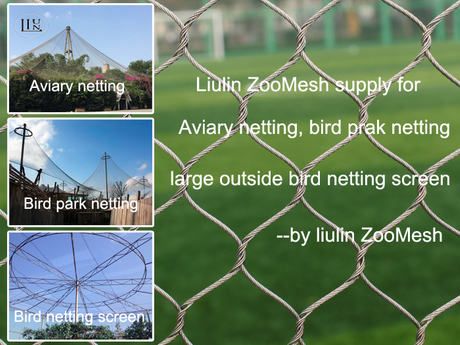 Zoo mesh sturcture.jpg