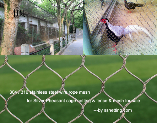 316 stainless steel wire rope mesh for Silver Pheasant cage netting & fence & mesh for sale
