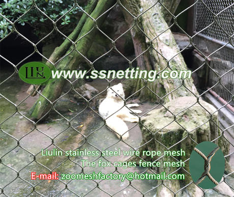 The fox cages fence mesh.jpg