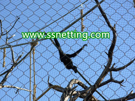 gorillas cage fence, gorillas fence enclosure, gorillas enclosure mesh-liulin manufacturer custom.jpg