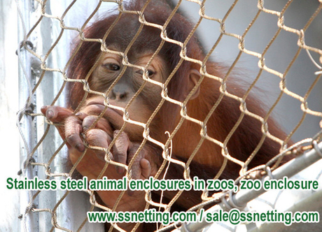 Stainless steel animal enclosures in zoos, zoo enclosure.jpg