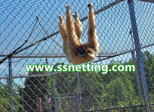 stainless steel rope mesh for zoo animal cage protection