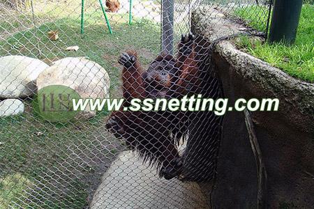 Animal Fence Enclosures Netting in Zoo Visiting Information.jpg