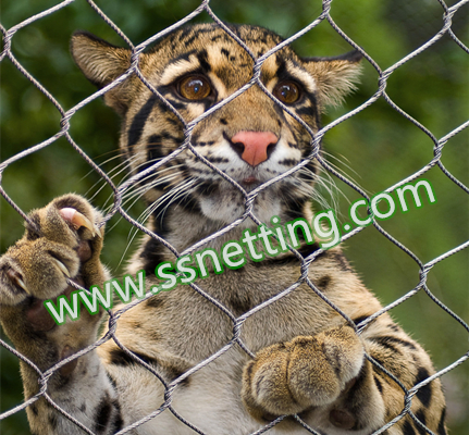 Big cat stainless steel cable mesh, tiger/big cat enclosure fence, zoo cable mesh for big cat, liulin zoo netting