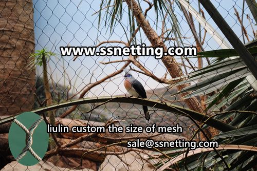 Stainless steel cable woven mesh for aviary