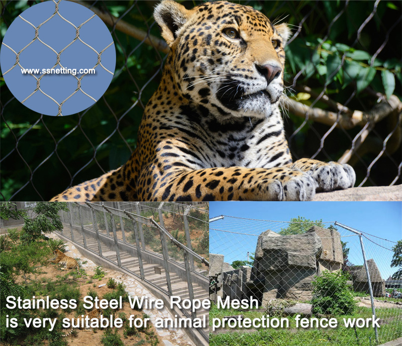 Stainless Steel Wire Rope Mesh is very suitable for animal protection fence work