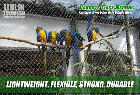 Parrots Cage Netting.jpg