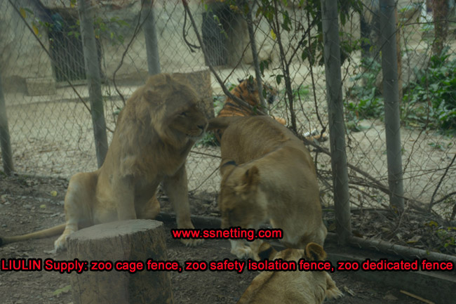 LIULIN Supply zoo cage fence, zoo safety isolation fence, zoo dedicated fence