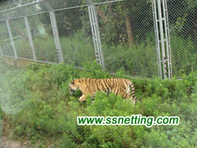 Tiger Enclosure Mesh