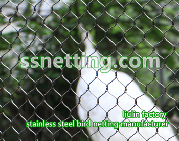 Woven aviary wire rope netting & fence used by zoo aviary exhibit | stainless steel aviary netting mesh