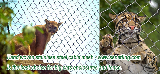 Hand woven stainless steel cable mesh is the best choice for big cats enclosures and fence.