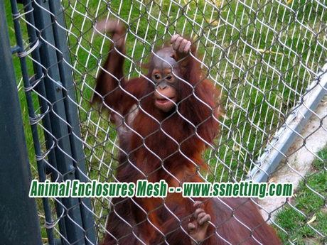Animal Enclosures Mesh - - www.ssnetting.com.jpg