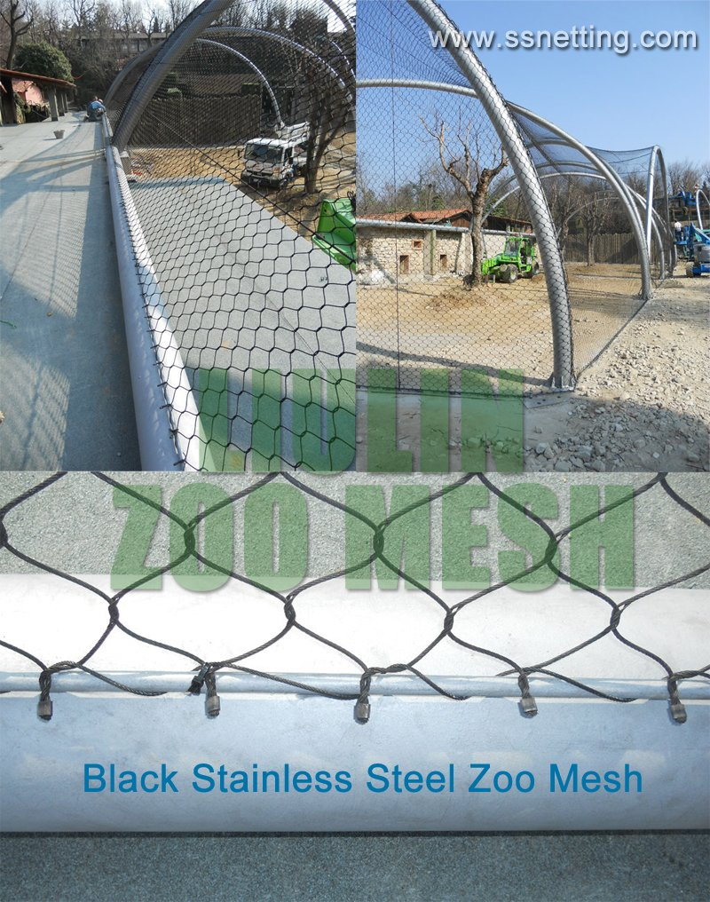 Black Stainless Steel Zoo Mesh