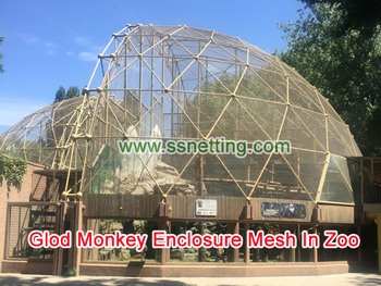 Glod Monkey Enclosure Mesh In Zoo