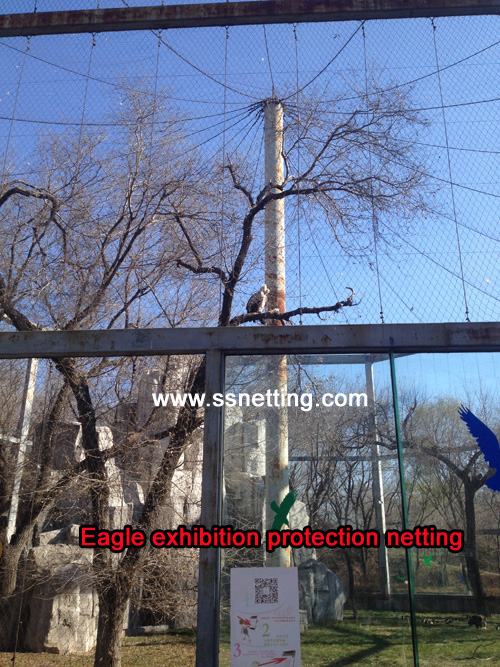 eagle exhibition protection netting